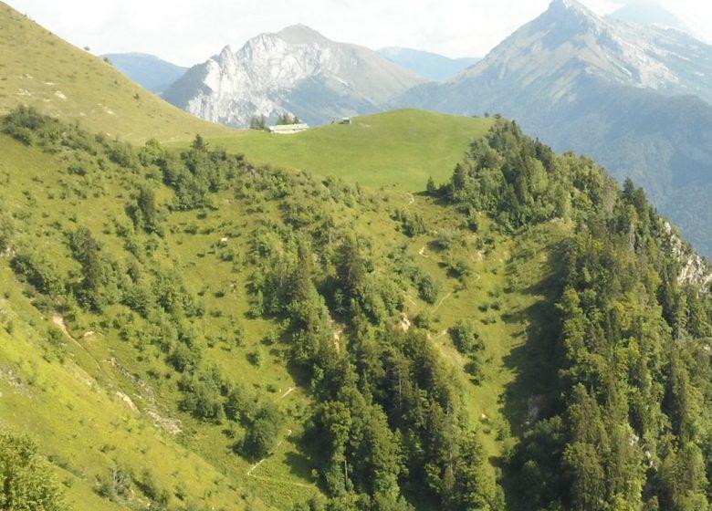 Sur le sentier Larrieux-Talamarche