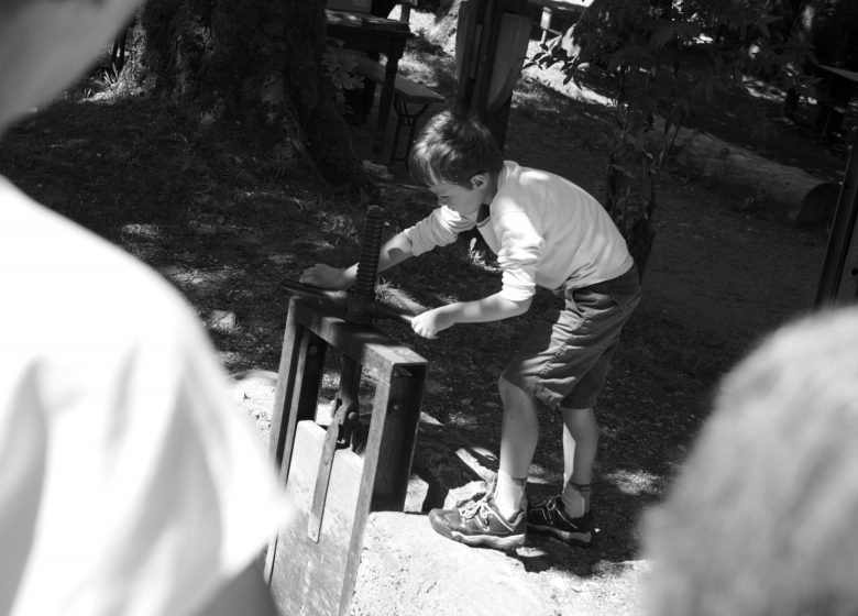Ecomusée du Bois et de la Forêt de Montremont