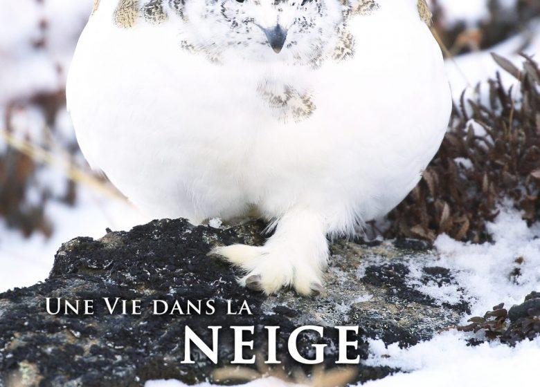 Affiche exposition «Une vie dans la neige»