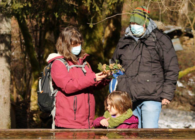 Atelier nature – Ecomusée du bois