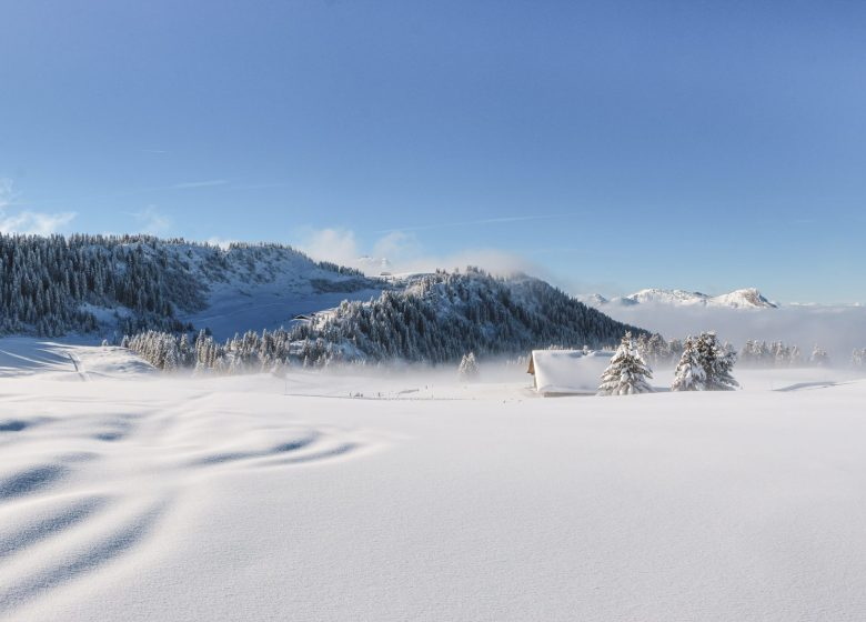 Plateau de Beauregard en hiver