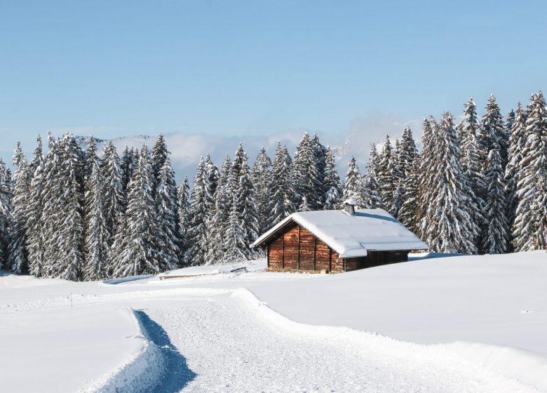 Chalet au Plateau de Beauregard en hiver
