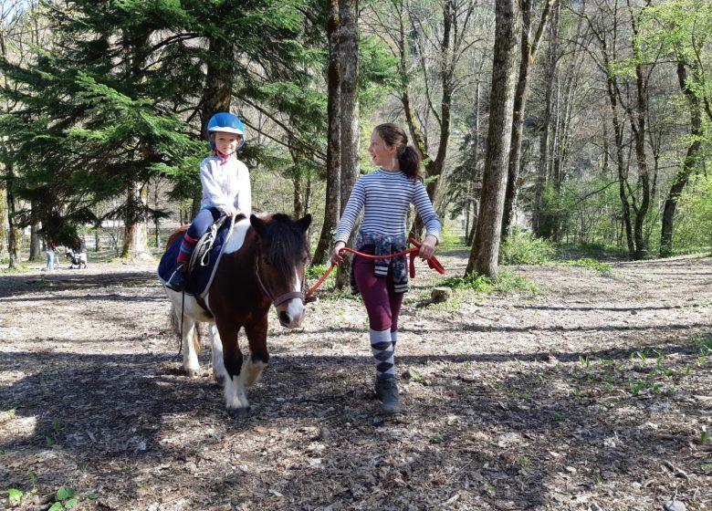 Tours de poneys à Thônes
